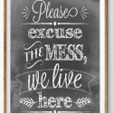 excuse mess
